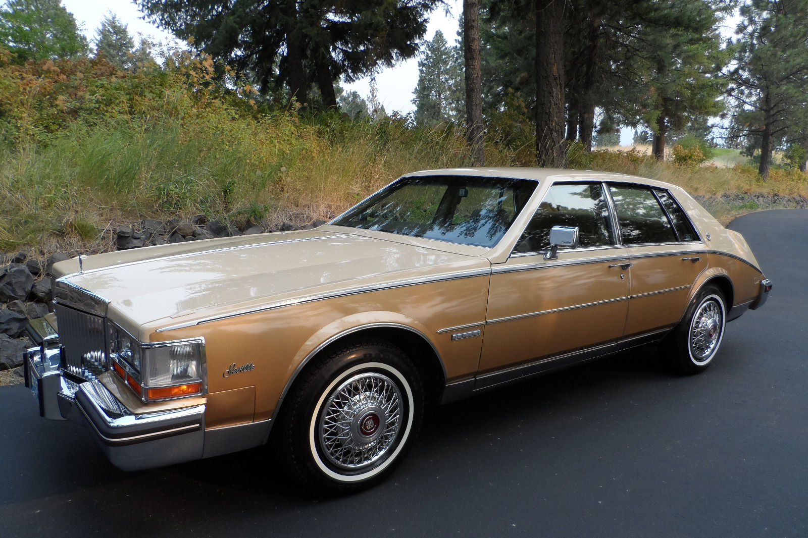Original Condition Cadillac Seville Only Miles For Sale on 1982 Cadillac Fleetwood Interior